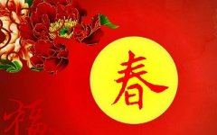 春节出生的生肖狗的人命运怎么样?