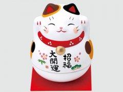 白色招财猫招什么?招财猫小判猫的故事