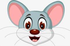 鼠宝宝在2020年十一月出生