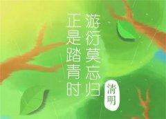 2013年属蛇的人在清明节这天出生命运怎么样?