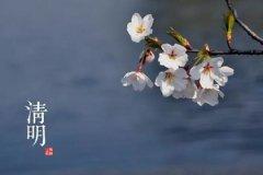 属鸡的人在1993年4月5日清明节出生命硬吗,属于喜土命吗?