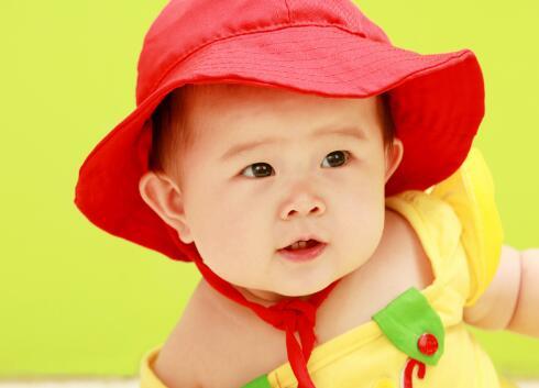 2008年鼠宝宝几日出生绝对忠诚,最值得信赖?-