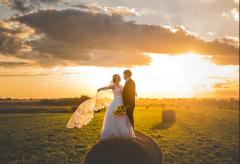 屬豬女和屬雞男的婚姻怎么樣?