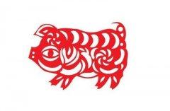 属猪本命年戴红绳有什么讲究?