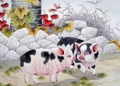 「屬豬」的圖片搜索結果