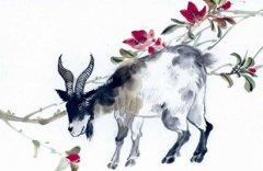 生肖羊的人和生肖马的人2020年适合结婚吗?生肖合吗?