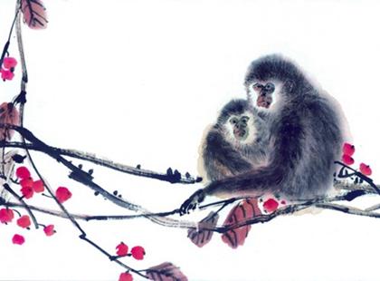 屬猴的人2020年哪一月財運最好,屬猴人養什麼植物能旺財運?_水墨先生