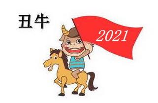 2021年運勢大全