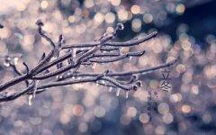 2020年立冬会下雨吗?立冬节气有什么禁忌?